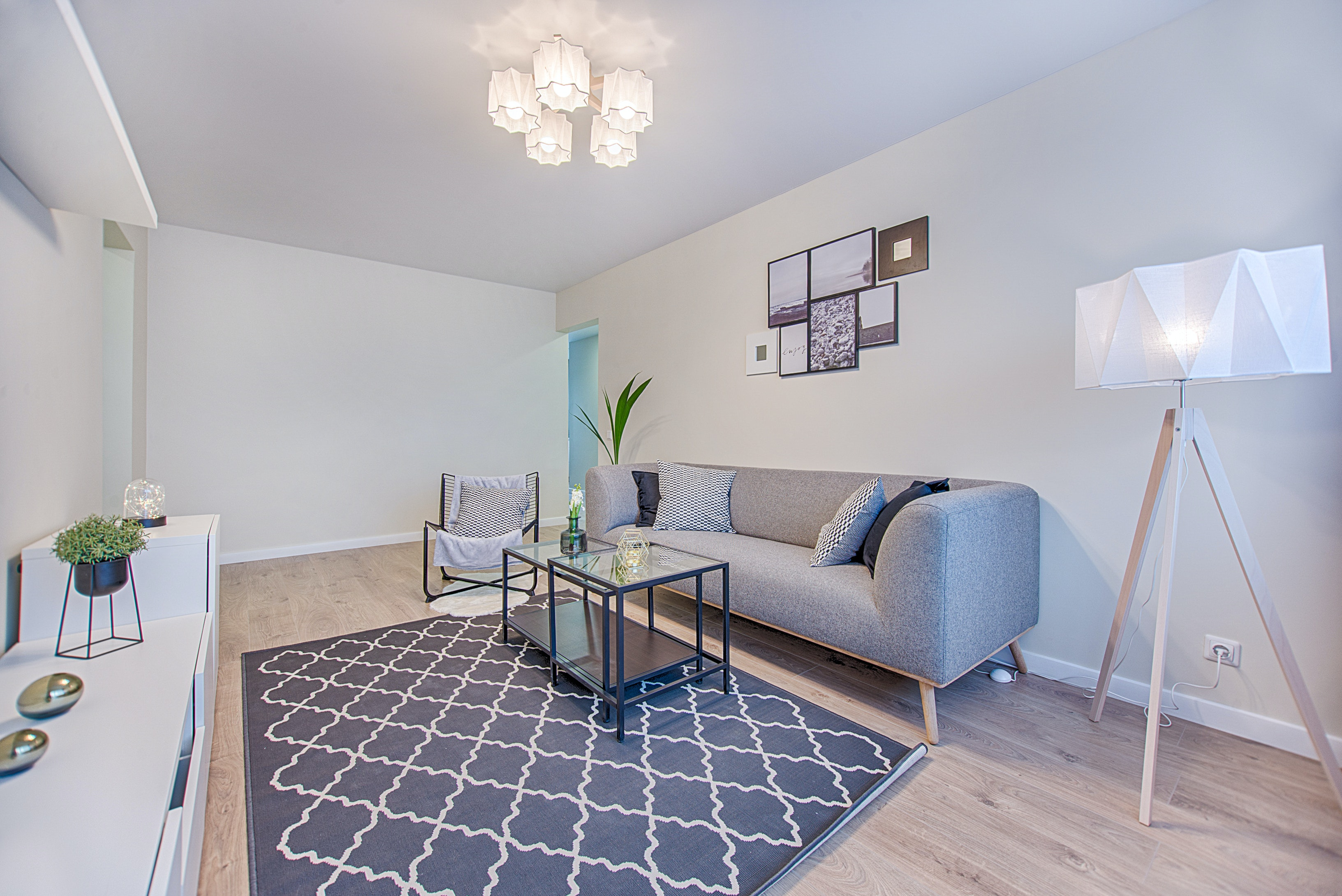 Soft grey sofa with rug on the bottom