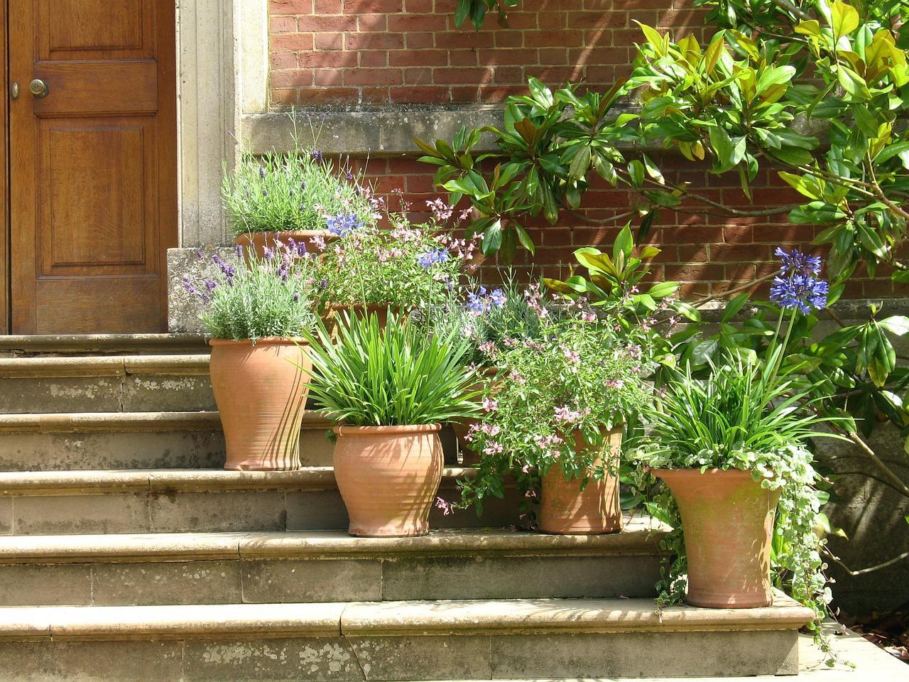 Pot plants decorations